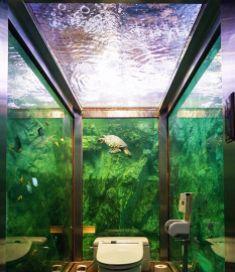 Uniknya Toilet Akuarium Di Kafe Terpopuler Akashi Di Jepang Indolinear Com